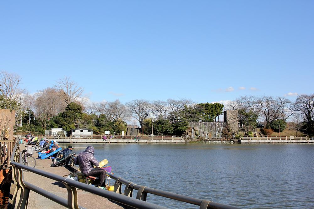 水元公園に隣接する整備された釣り場